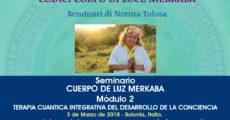 Semirario: TERAPIA CUANTICA INTEGRATIVA DEL DESARROLLO DE LA CONCIENCIA Módulo 2